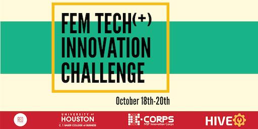 Fem Tech (+) Innovation Challenge (Pitch)