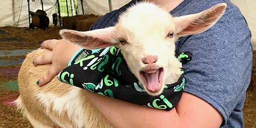 Goat Yoga Nashville- New Year's Day Class