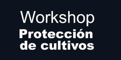 #3 Workshop: Protección de cultivos entradas