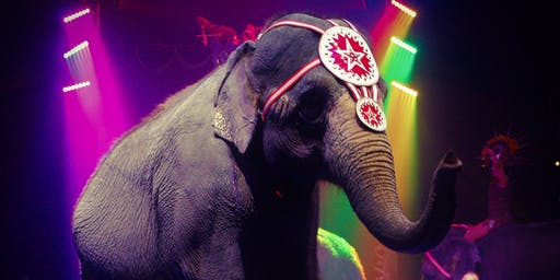 Carson & Barnes Circus Presents CircusSaurus - Huntsville, TX