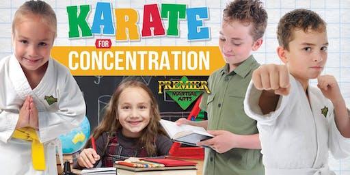FREE Children's KARATE for CONCENTRATION Beginner's Martial Arts Workshop