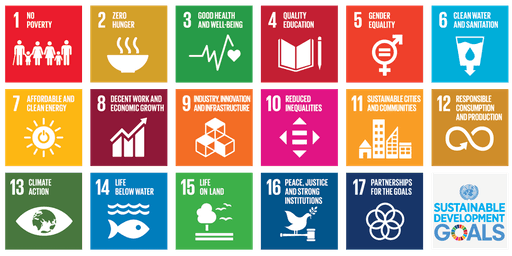 International Data Science Conference for Sustainable Development Goals