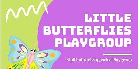 Little Butterflies Playgroup
