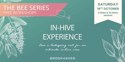 The Bee Series - In-Hive Experience