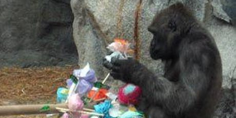 Animal Enrichment Activities for the Columbus Zoo tickets