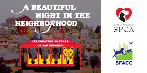 A Beautiful Night in the Neighborhood