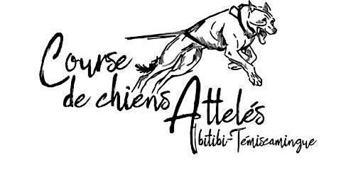 Course de chiens attelés Abitibi-Témiscamingue 2020
