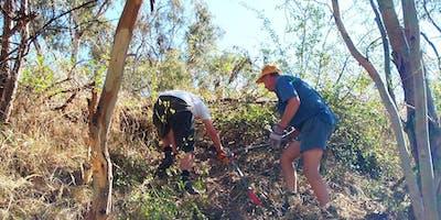 Parklands Volunteer Ranger Program
