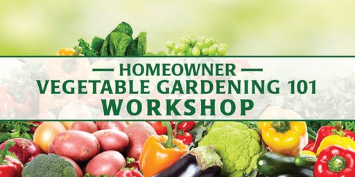 Homeowner Vegetable Gardening 101