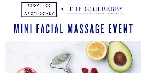 Province Apothecary Mini Facial Massage