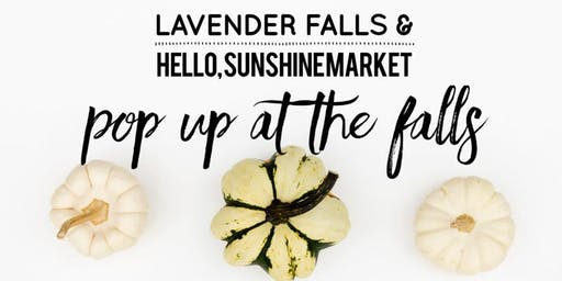 Pop Up at the Falls with Hello, Sunshine Market
