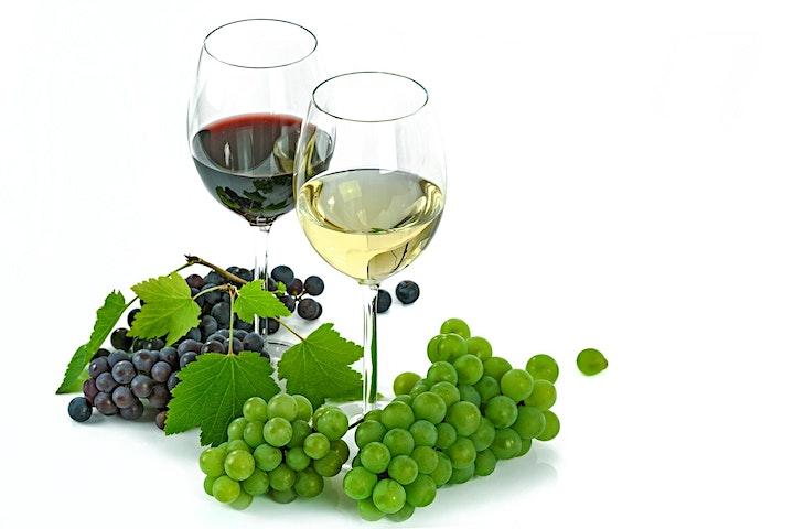 Argentine Wine Tasting image