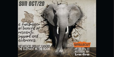 Metastatic Breast Cancer: The Elephant in The Room tickets