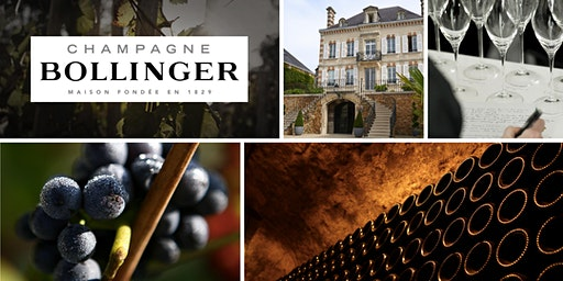 Bollinger Champagne Tasting