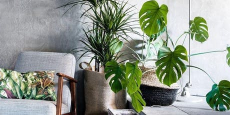 How to love your houseplants  tickets