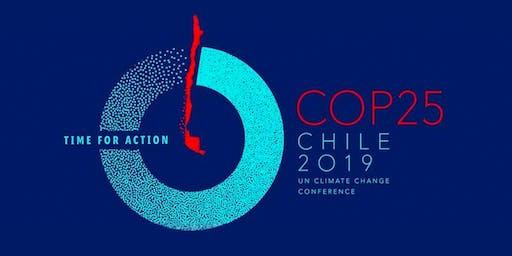 Looking ahead at COP25