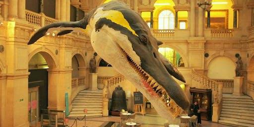 Bristol behind the scenes Museum tour