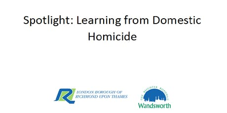 Spotlight: Learning from Domestic Homicide tickets