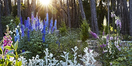 Oak & Monkey Puzzle Summer Open Garden Day, Daylesford region, Victoria tickets