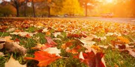 SES Autumn Roadshows  tickets