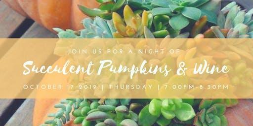 Succulent Pumpkins & Wine