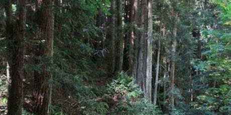 HCSF/HCSV Purisima Creek Redwoods Preserve Hike tickets