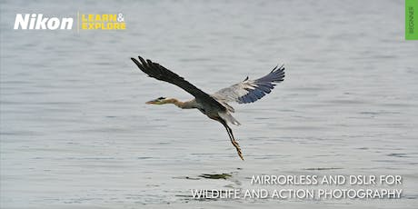 Nikon Learn & Explore | Mirrorless and DSLR for Wildlife and Action Photography tickets