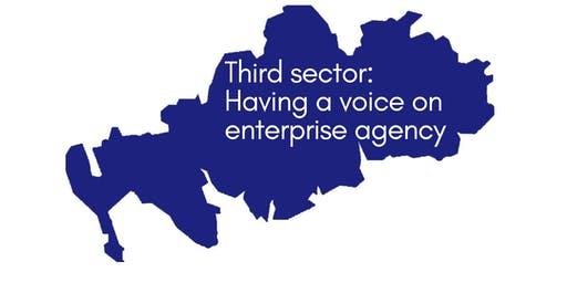 The third sector and South of Scotland Enterprise