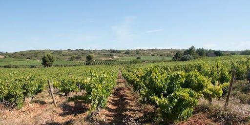Wine Class - Chateau Haut-Blanville