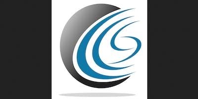 Art of Internal Audit Report Writing (CCS)