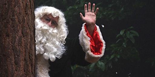 Storytime with Woodland Santa