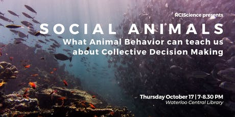 Social Animals: What Animal Behavior Can Teach Us About Collective Decisions tickets