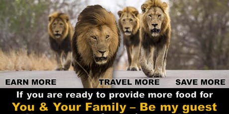 MAKE TRAVEL YOUR BUSINESS/Build Financial Wealth and Freedom tickets