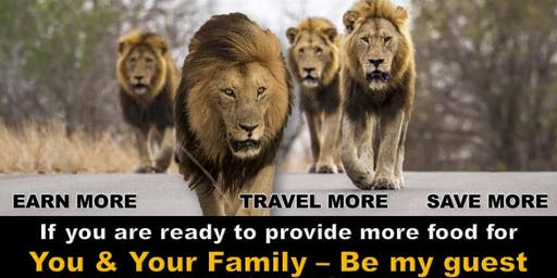 MAKE TRAVEL YOUR BUSINESS/Build Financial Wealth and Freedom