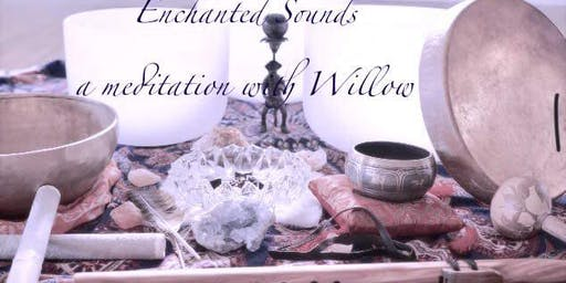 Healing Sounds Meditation with Willow