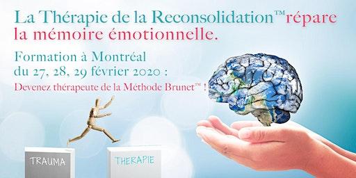 Thérapie de la Reconsolidation™ : fondements et pratique - MONTRÉAL