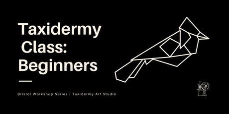 Taxidermy Class: Beginners // Bristol Workshop Series tickets