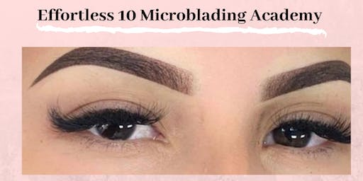 Effortless 10  Microshading Ombre Powder Training Raleigh, NC December 29th