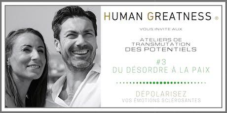 Séminaire #3 - Du Désordre émotionnel à la PAIX intérieure - PARIS billets