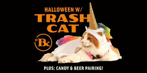 Halloween Party w/ Trash Cat