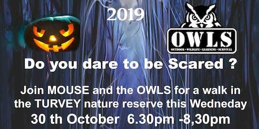 OWLS Halloween Scare Walk
