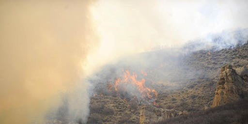 Routt County Wildfire Mitigation Roundtable Follow Up