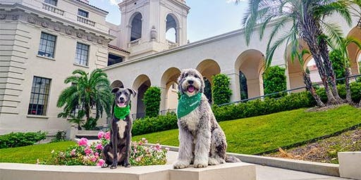 Pasadena Grand Opening Pawty