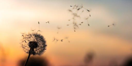 Mindfulness: Boundaries, Attention & Gratitude