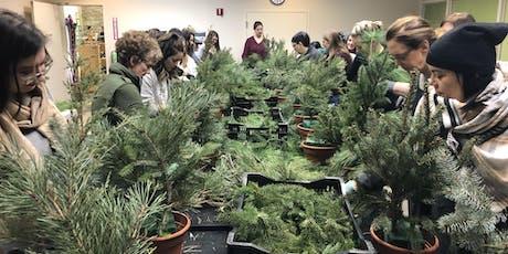 DIY Holiday Planter Workshop with Petals Farm tickets