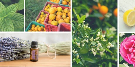 Essential Oils for Daily Wellness tickets