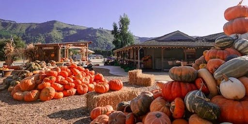 Fall Fun Days at Earthbound  Farm Stand