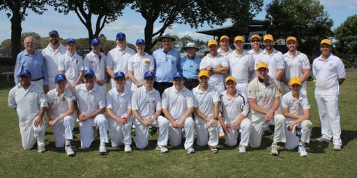 Pharmacy Cricket: Blues vs Golds