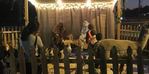 Night in Bethlehem