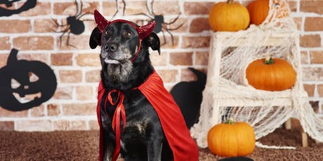 Howl-O-Ween Yappy Hour tickets